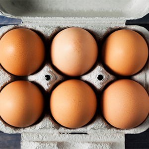 everything-you-need-to-know-about-eggs